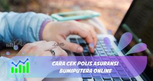 Cara Cek Polis Asuransi Bumiputera Online