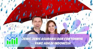 Jenis Jenis Asuransi dan Contohnya yang Ada di Indonesia