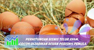 perhitungan bisnis telur ayam