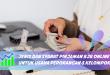 Jenis dan Syarat Pinjaman BJB Online untuk Usaha Perorangan atau Kelompok